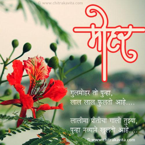 Marathi Love Greeting Gulmohar | Chitrakavita.com
